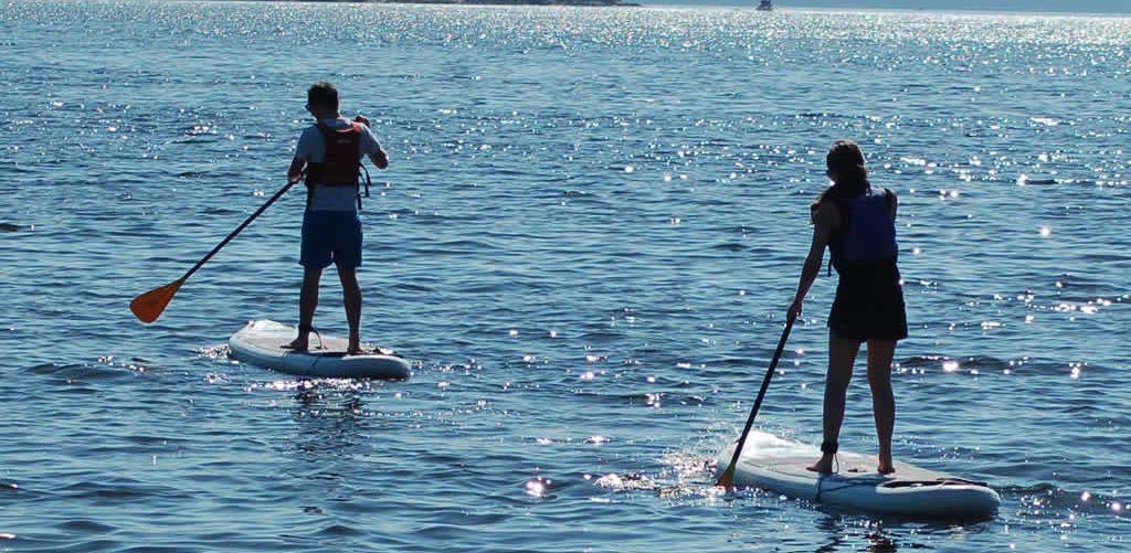 paddle-6