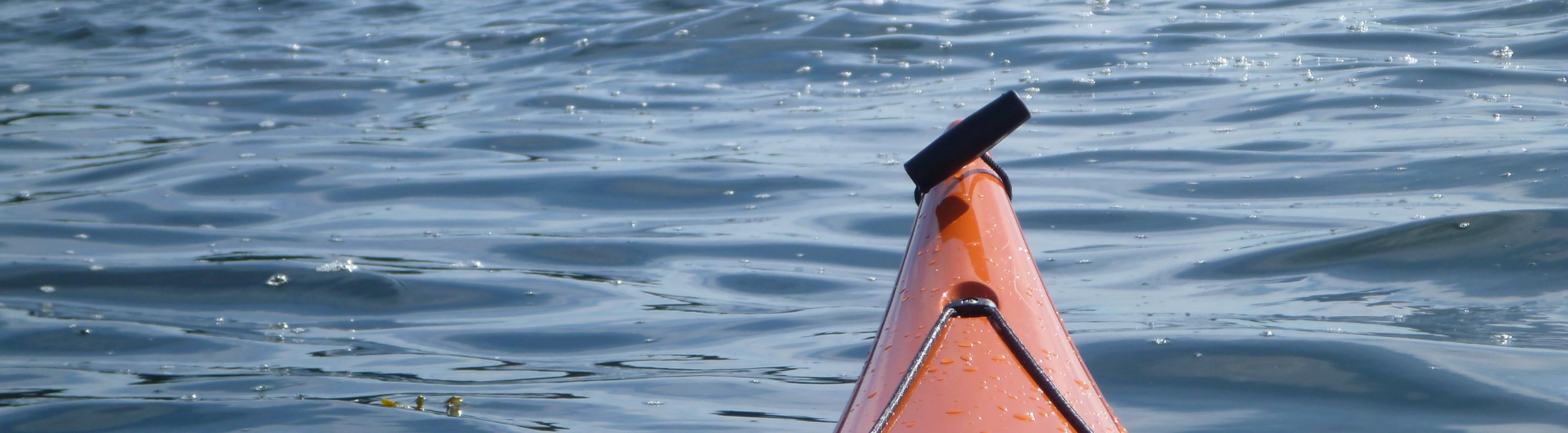 kayak_ladysmith